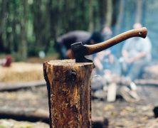 Druck durch die EU-Kommission? Massiver Holzeinschlag in den rumänischen Nationalparks