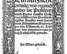 "Die Hermannstädter 1510 vor der ""bösen Pestilenz"" gerettet"