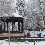 Winterstimmung im Erlenpark